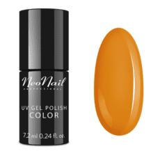 Foto del producto 2: Esmalte permanente Neonail 7,2ml – Stay Chic.