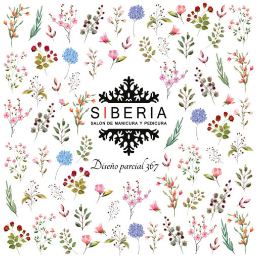 Slider SIBERIA 367