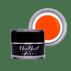 Foto del producto 10: Paint Gel Expert Neon Orange.