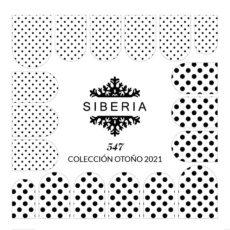Foto del producto 12: Slider SIBERIA 547.